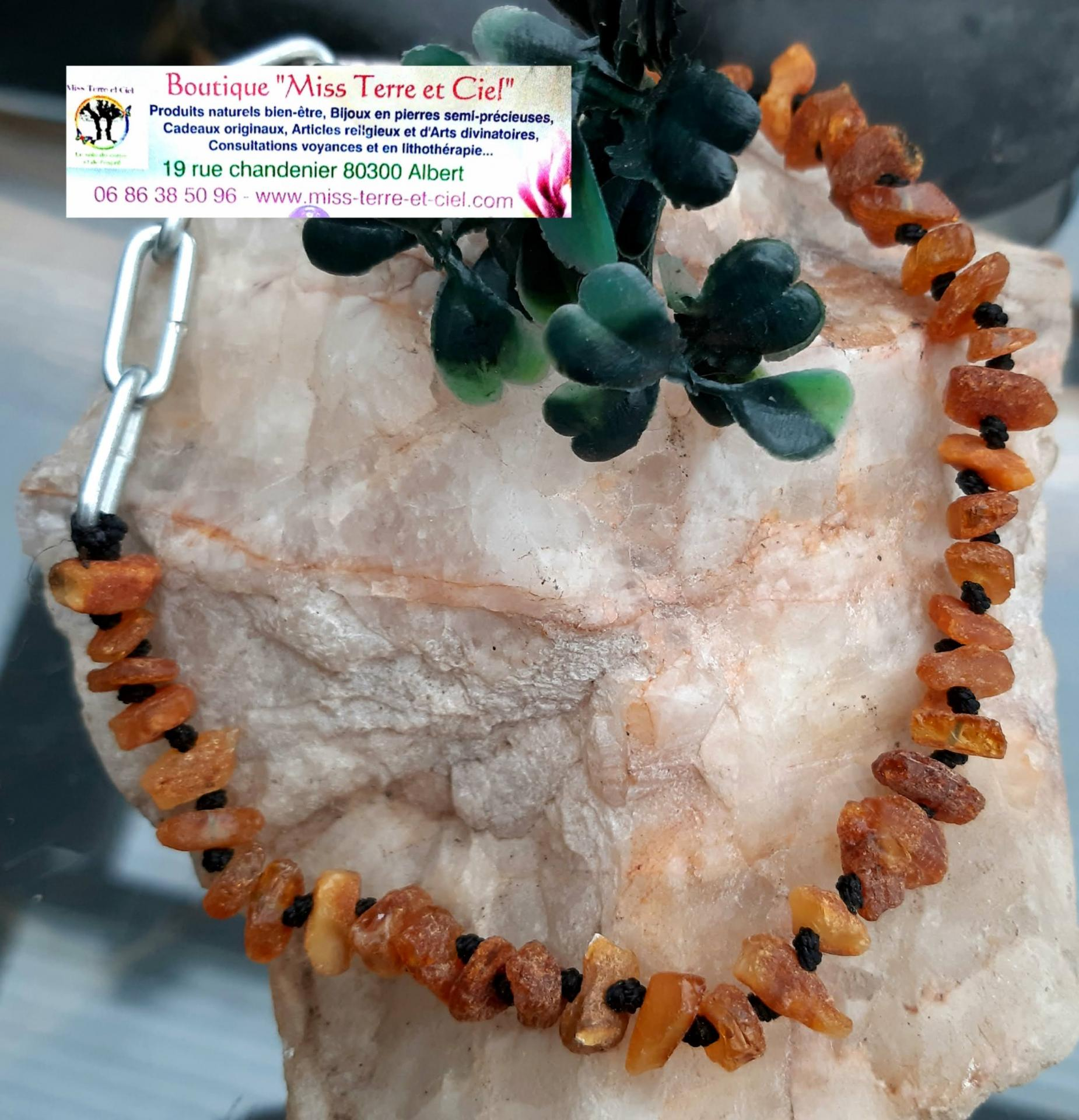 collier d'ambre anti tiques anti puces pour chiens