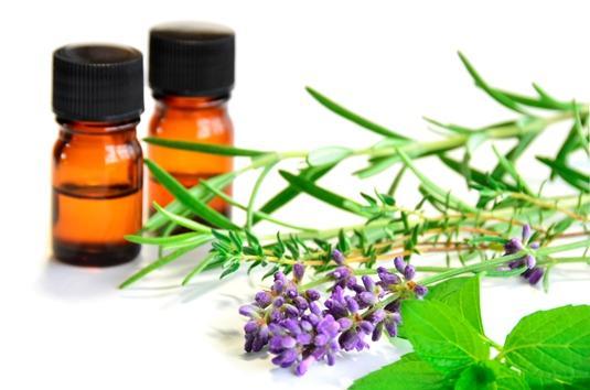 Aromatherapie xs 1