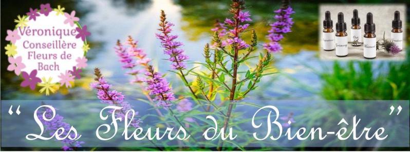 Conseillère en Fleurs de Bach cliquez ici
