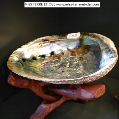 COQUILLAGE D'ORMEAU (ABALONE)