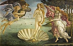 Venus purte